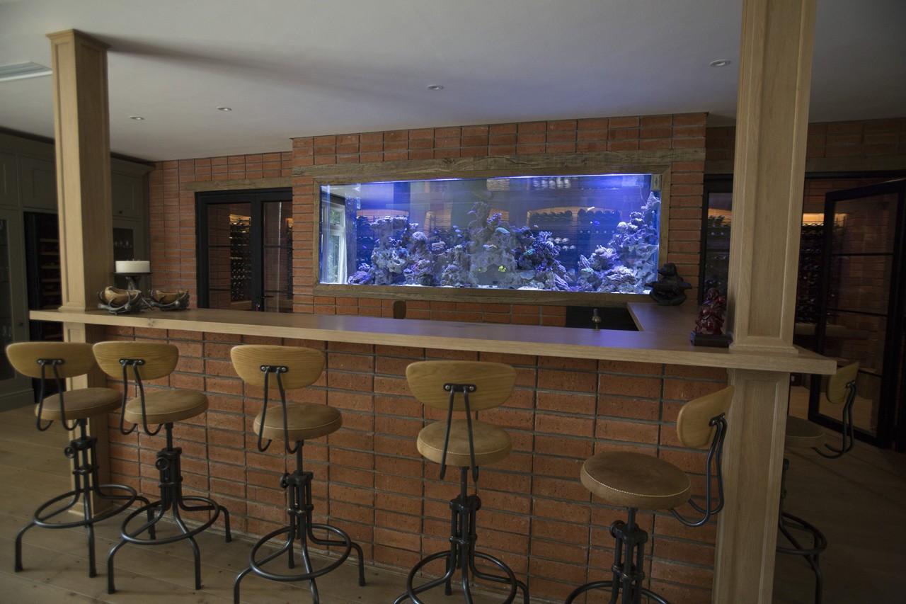 custom marine aquariums H31B2284 rentals