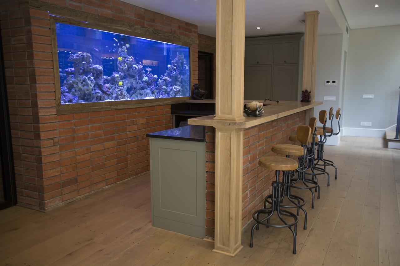 custom marine aquariums H31B2377 rentals